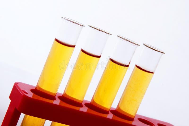 Câmaras de ar de teste da química imagem de stock