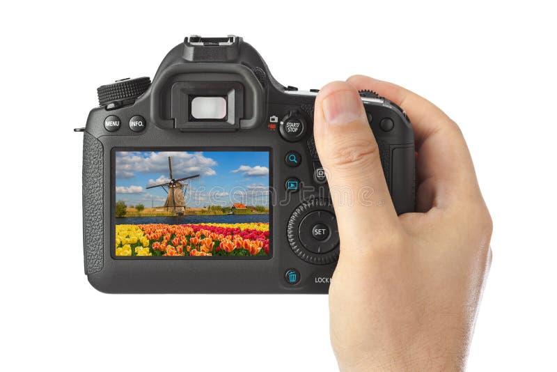 Câmera e moinhos de vento e flores em Países Baixos minha foto imagem de stock royalty free