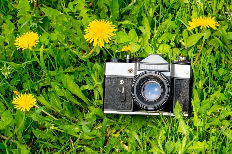 Câmera retro velha do filme na grama verde com as flores amarelas no dia ensolarado fotografia de stock royalty free