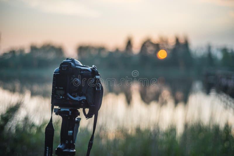 Câmera velha de DSLR em um tripé no por do sol perto de um lago fotos de stock