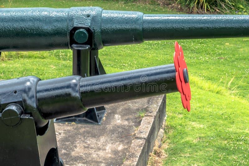 Cânones velhos Auckland do forte, Nova Zelândia imagens de stock