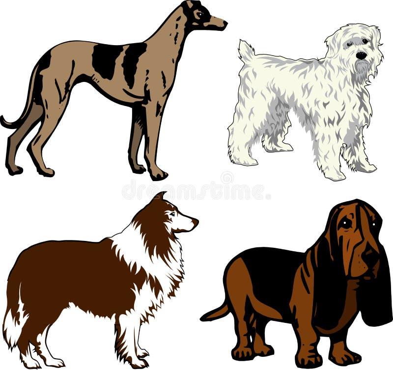 Cães 2 ilustração royalty free