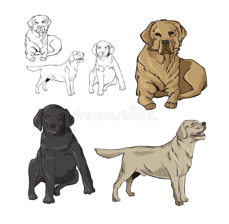 Cães animais ilustração royalty free