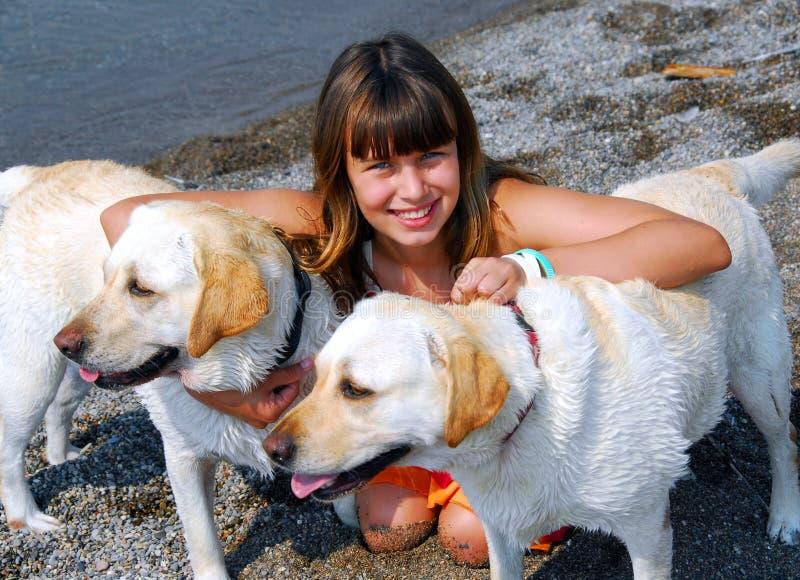 Cães da menina dois fotos de stock royalty free