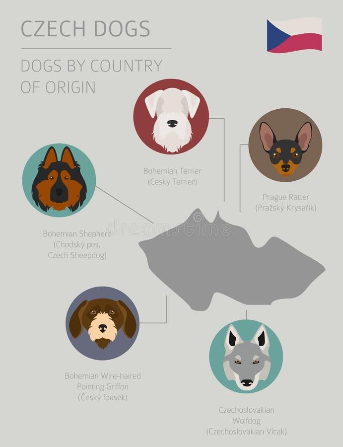 Cães pelo país de origem Raças checas do cão Templat de Infographic ilustração stock