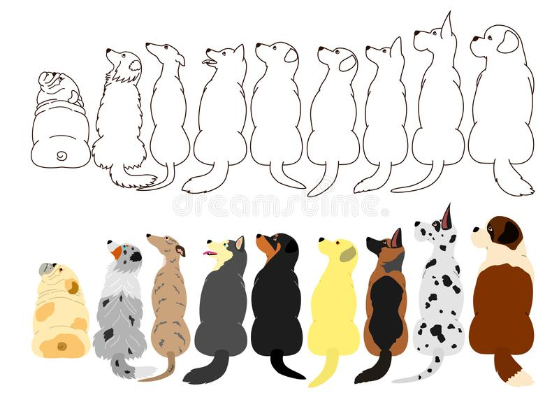 Cães que olham acima lateralmente em seguido ilustração stock