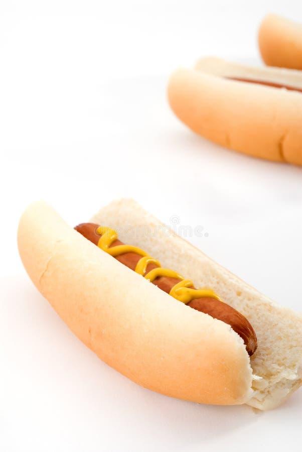 Cães quentes imagens de stock