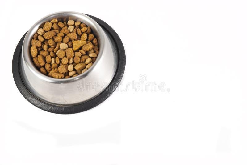 Cão-alimento em uma bacia fotos de stock royalty free