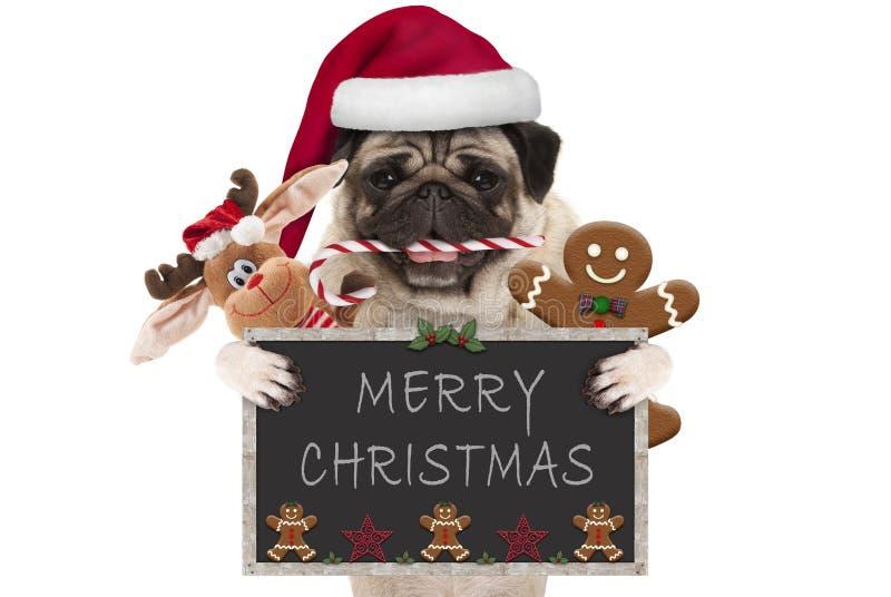 Cão bonito do pug do Natal com o chapéu de Santa e o bastão de doces, os brinquedos e as cookies, sustentando o quadro-negro fotos de stock royalty free