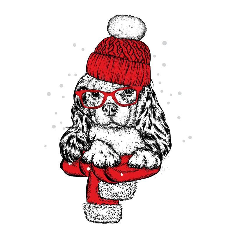 Cão bonito em um chapéu, em um lenço e em uns vidros Cachorrinho do puro-sangue Spaniel na roupa do inverno Ilustração do vetor ilustração royalty free