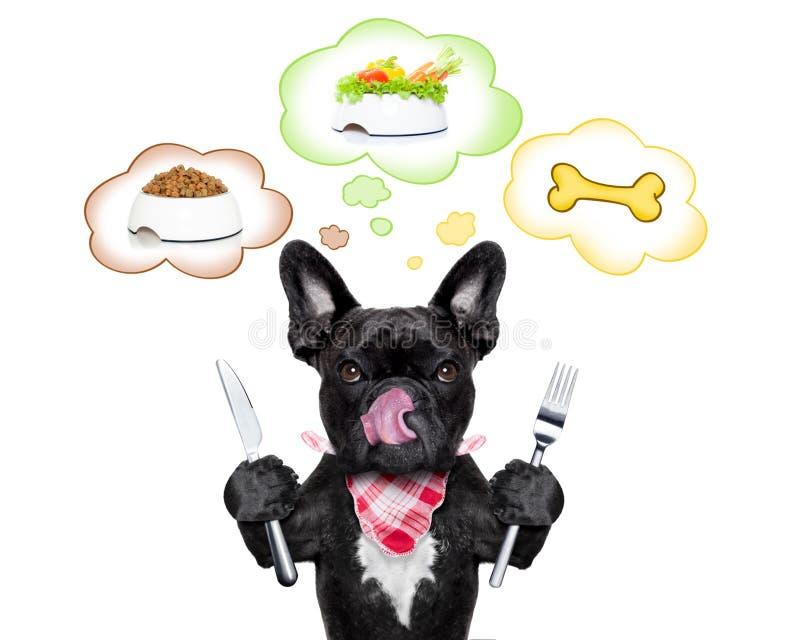 Cão com fome com bolha do discurso imagem de stock