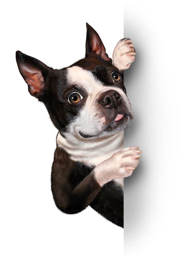 Cão com um cartão em branco ilustração do vetor