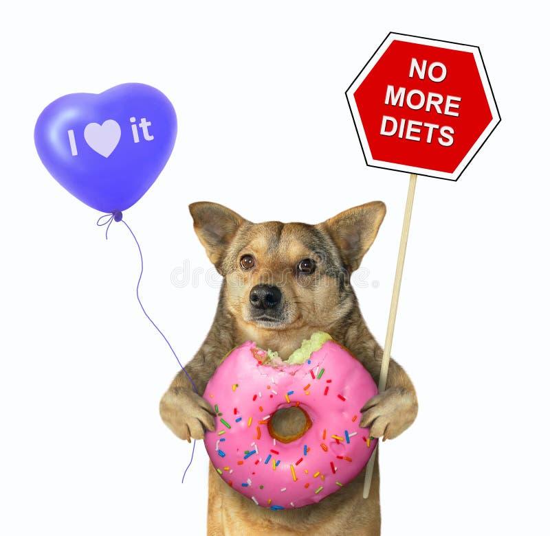 Cão com um sinal e uma filhós cor-de-rosa 2 imagens de stock