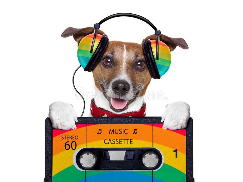 Cão da música foto de stock