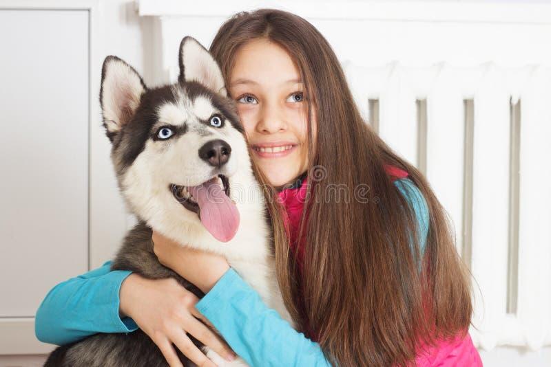 Cão da menina e do cão de puxar trenós Siberian imagem de stock