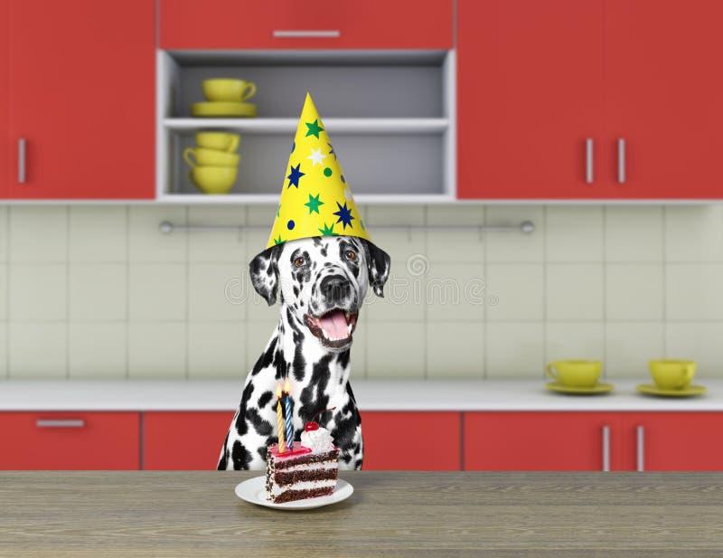 Cão dalmatian engraçado que espera para comer o bolo de chocolate imagem de stock