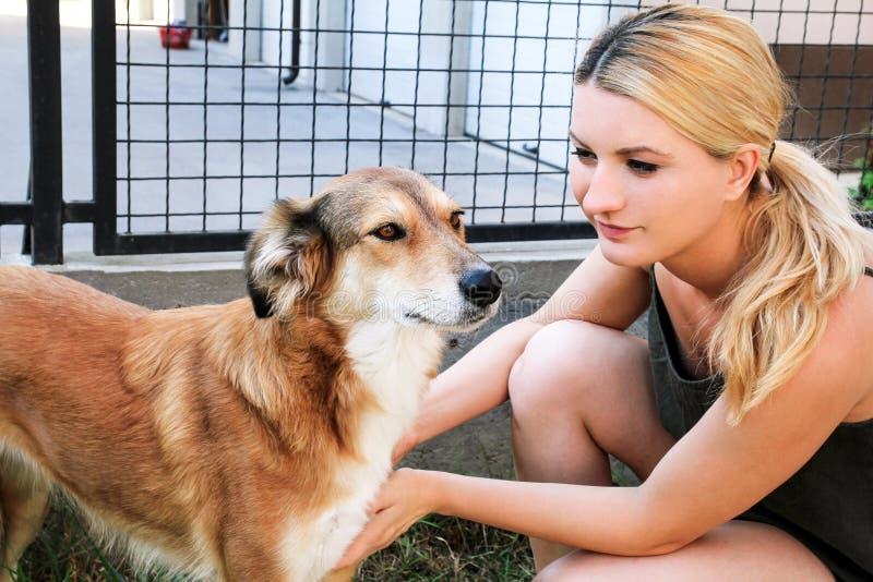 Cão das trocas de carícias do proprietário Proprietário fêmea das trocas de carícias seu cão no jardim imagem de stock royalty free