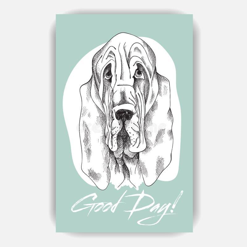Cão de Basset triste do cão