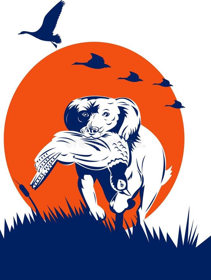 Cão de caça que recupera o faisão ilustração royalty free