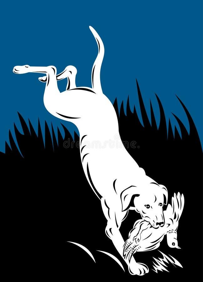 Cão de caça que recupera o faisão ilustração stock