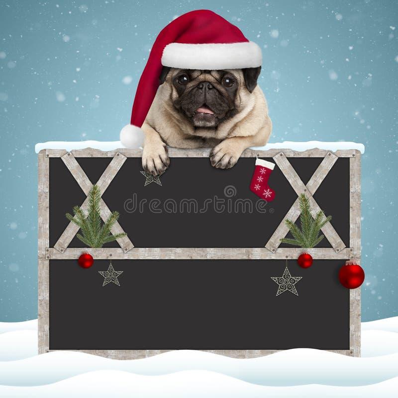 Cão de cachorrinho bonito do pug do Natal que pendura com as patas no sinal vazio do quadro-negro com quadro de madeira e decoraç imagem de stock royalty free