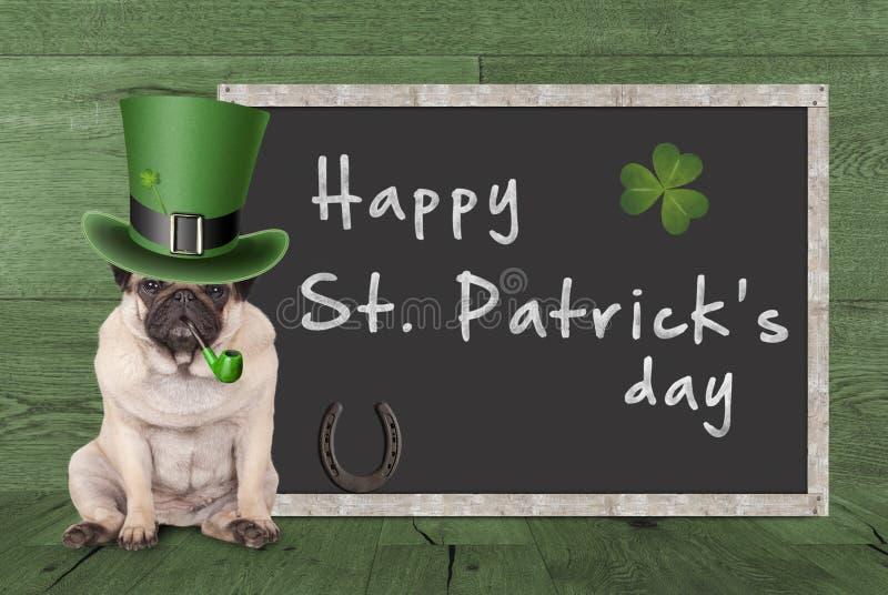 Cão de cachorrinho do Pug com o chapéu do duende para a tubulação de fumo do dia do ` s de St Patrick, sinal vazio seguinte de as fotos de stock