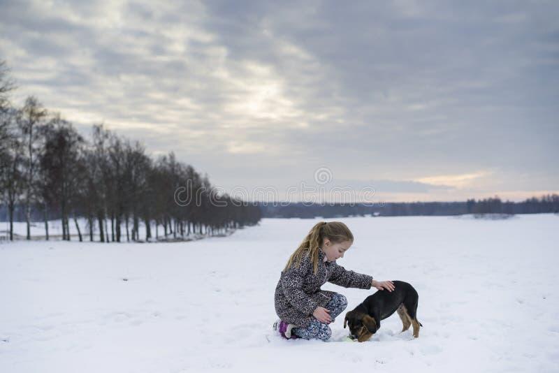 Cão de cachorrinho sueco caucasiano louro pequeno do jogo e do afago da menina na paisagem sueco do inverno fotos de stock