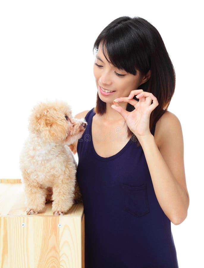Cão de caniche de alimentação da mulher asiática imagens de stock royalty free
