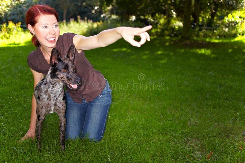 Cão de ensino da mulher a buscar foto de stock royalty free