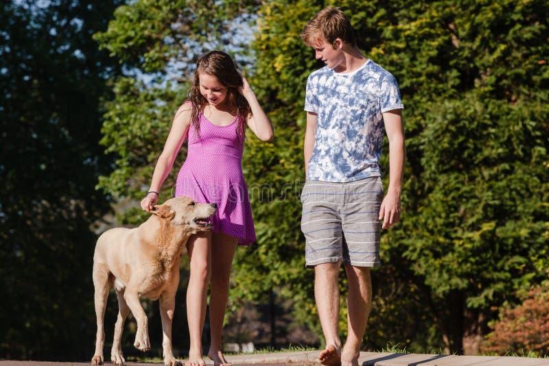 Cão de fala de passeio da menina do menino fotos de stock royalty free