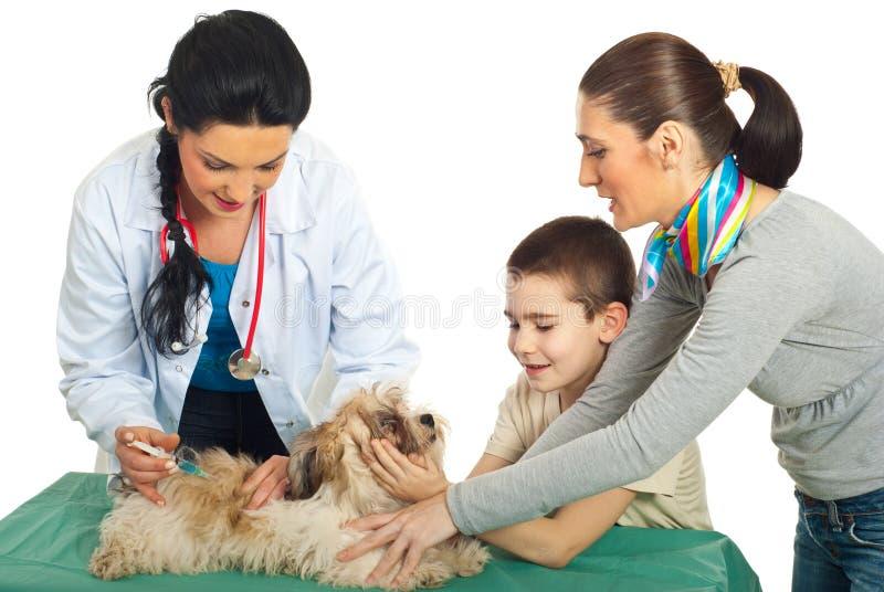 Cão de filhote de cachorro vacinal do veterinário do doutor fotos de stock