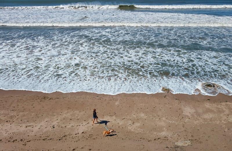 Cão de passeio da senhora na manhã em uma praia em Califórnia do sul imagens de stock