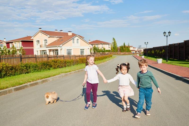 Cão de passeio das crianças fotos de stock royalty free