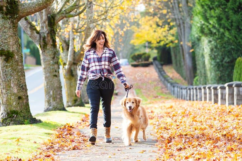 Cão de passeio do golden retriever da mulher nas folhas da queda fotos de stock royalty free