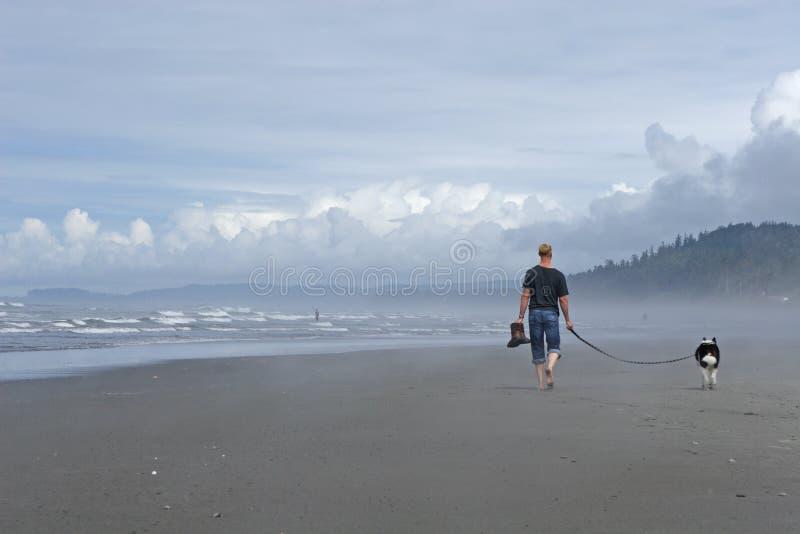 Cão de passeio do homem na praia fotografia de stock royalty free