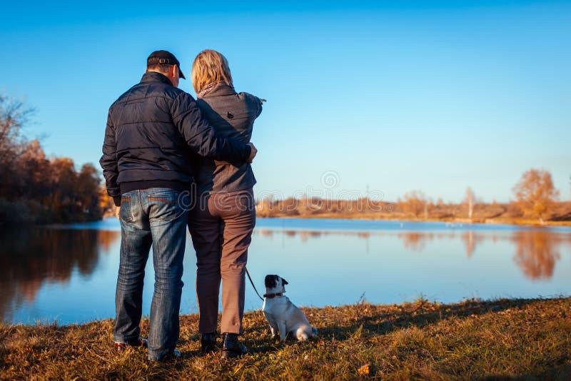 Cão de passeio do pug dos pares superiores no parque do outono pelo rio Homem feliz e mulher que apreciam o tempo com animal de e imagens de stock royalty free