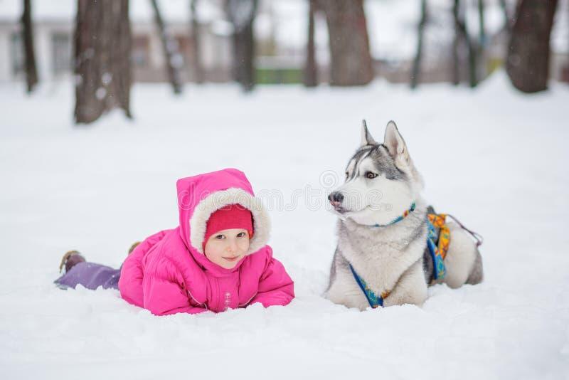 Cão de puxar trenós da menina na neve na floresta imagem de stock