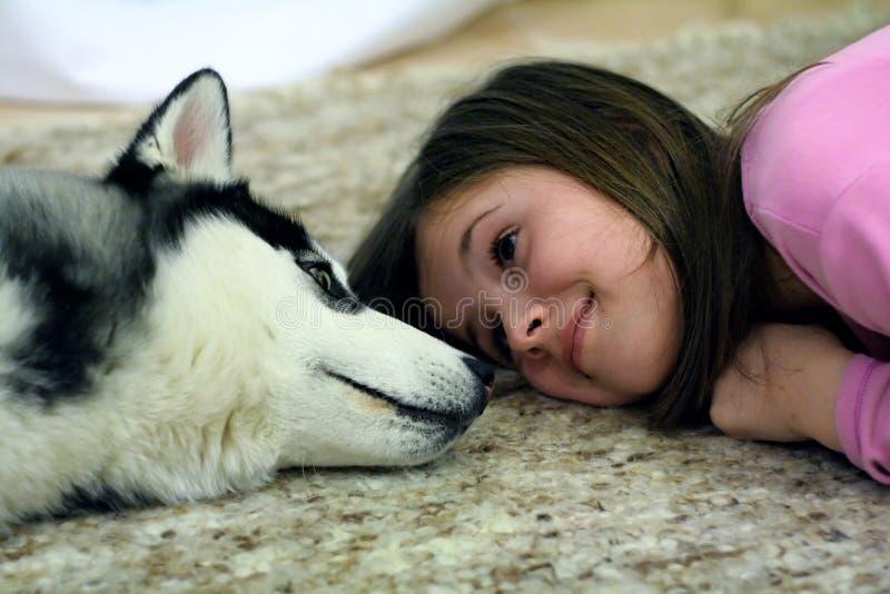 Cão de puxar trenós e menina foto de stock