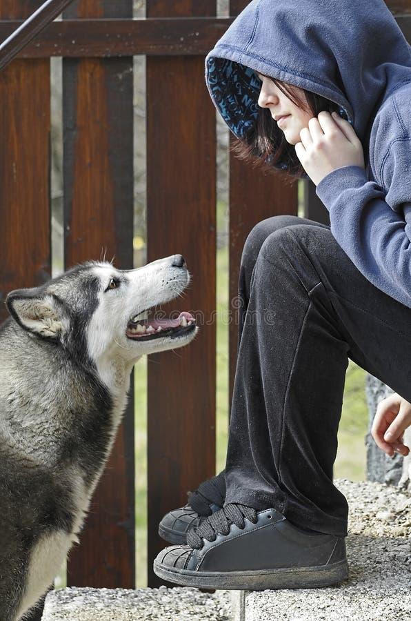 Cão de puxar trenós que olha acima a um adolescente imagens de stock