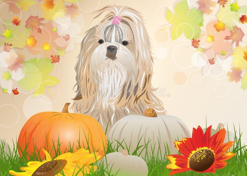 Cão de Shih Tzu ilustração stock