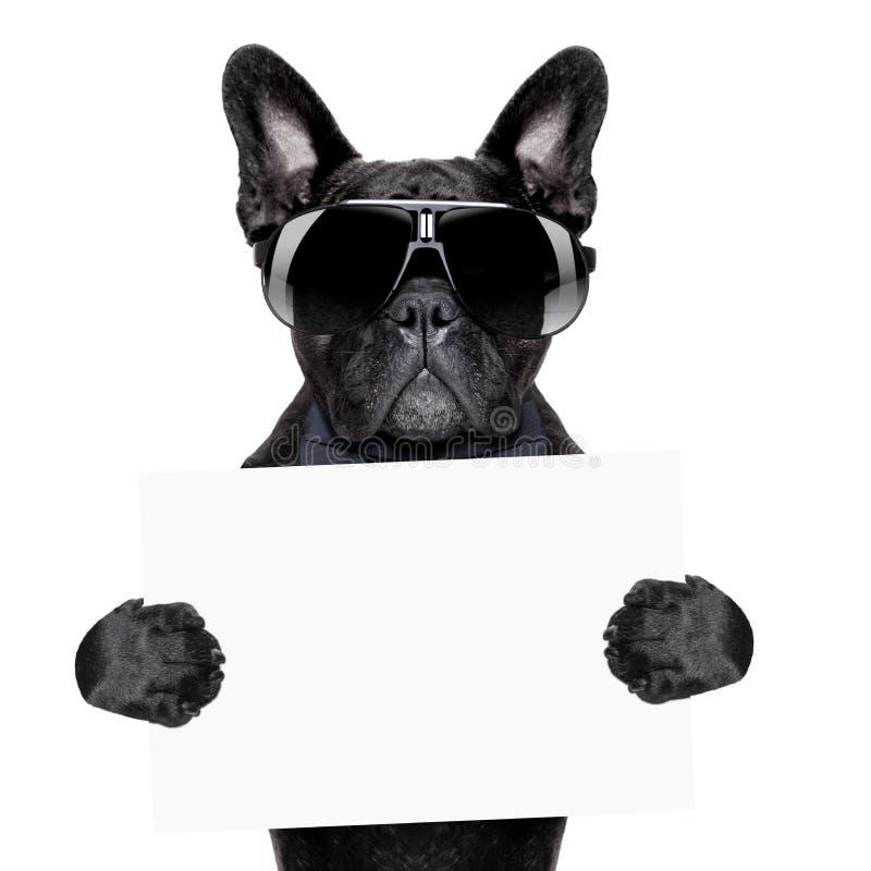 Cão do cartaz imagens de stock
