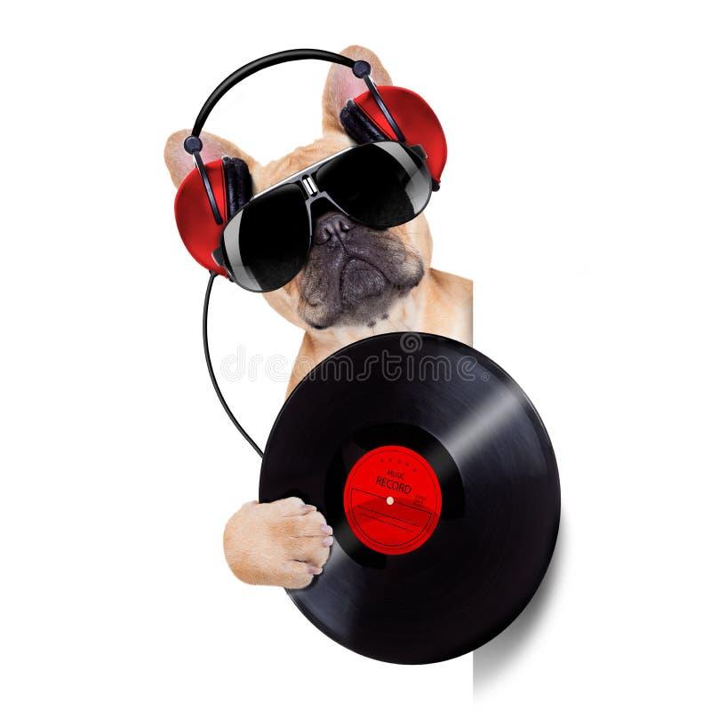 Cão do disco do DJ imagem de stock royalty free