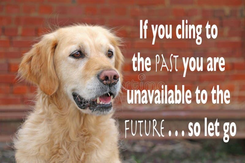 Cão do golden retriever com citações inspiradas imagem de stock royalty free