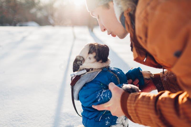 Cão do Pug que anda na neve com seu mestre Revestimento vestindo do inverno do cachorrinho Homem que fala ao animal de estimação imagens de stock