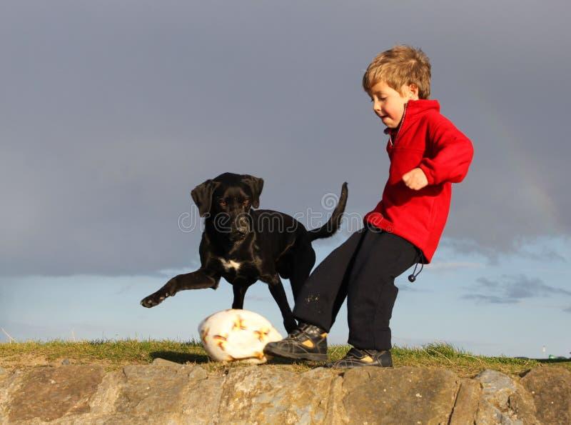 Cão e menino do futebol fotos de stock royalty free