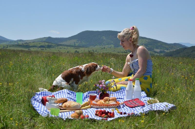 Cão e mulher que apreciam o piquenique imagens de stock