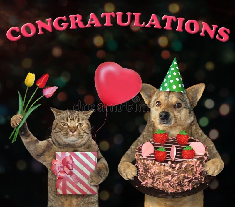 Cão e um gato com uma torta 2 da morango imagem de stock royalty free