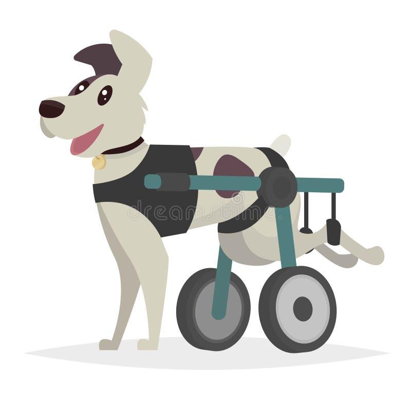 Cão em uma cadeira de rodas para as patas traseiros Ilustração do vetor na ilustração do vetor