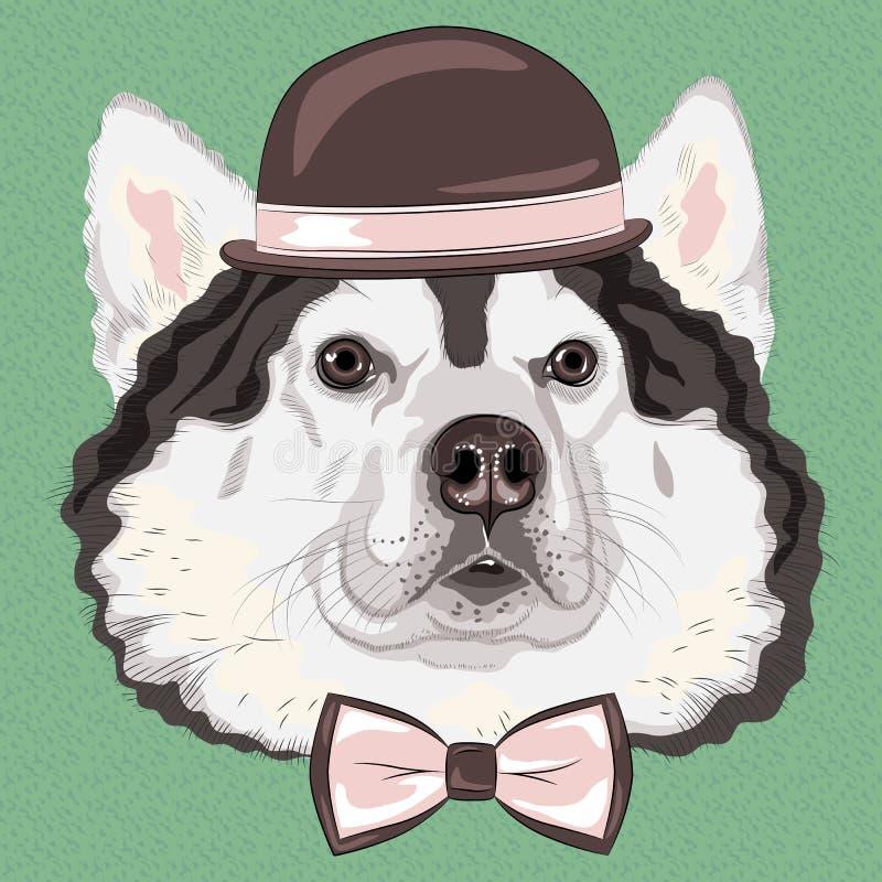 Cão engraçado do Malamute do Alasca do moderno dos desenhos animados do vetor ilustração do vetor