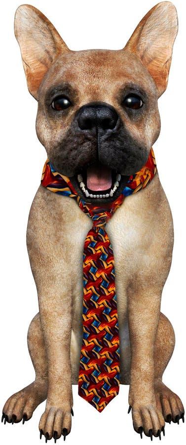 Cão engraçado, laço feio, isolado fotos de stock